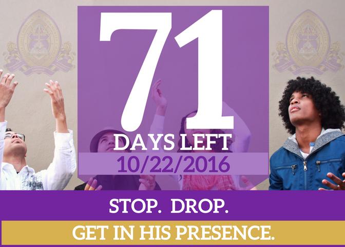 71-days-left-for-website