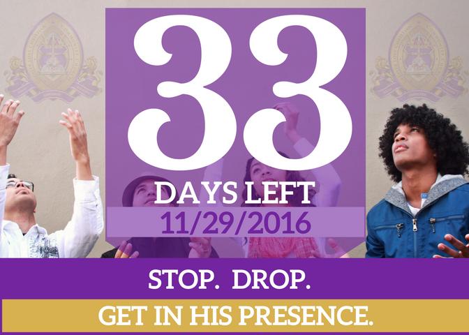 33-days-left-for-website
