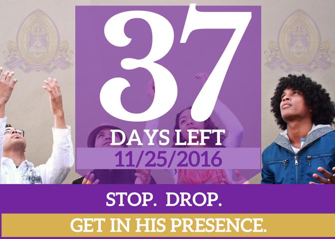 37-days-left-for-website