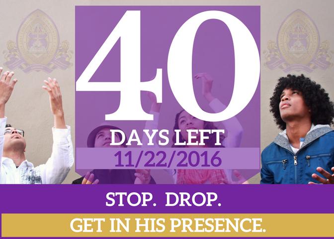 40-days-left-for-website