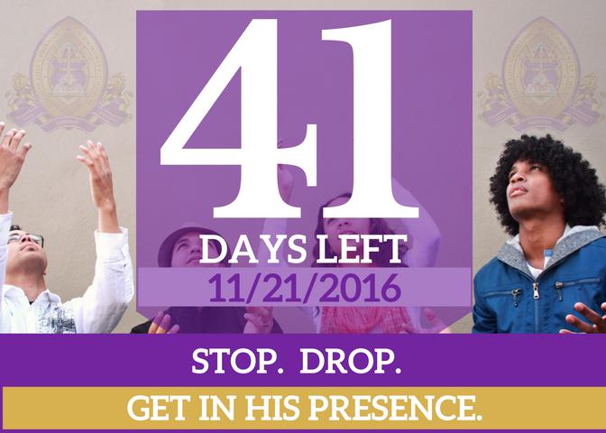 41-days-left-for-website