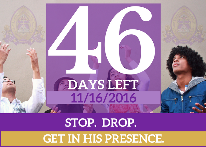 46-days-left-for-website