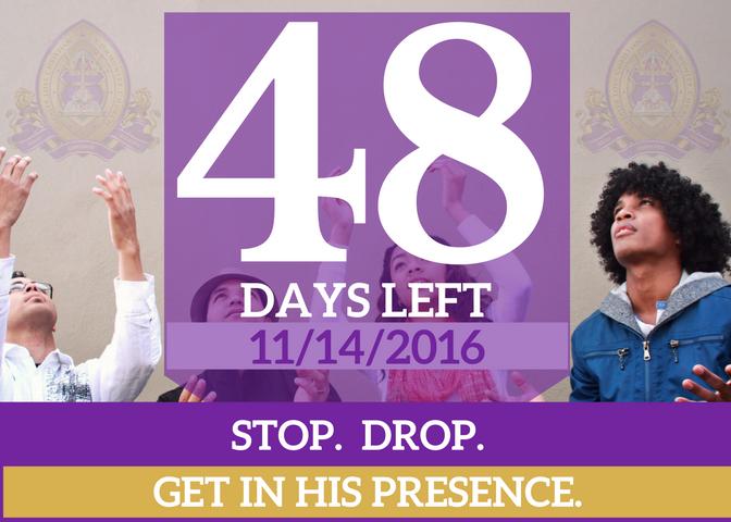 48-days-left-for-website