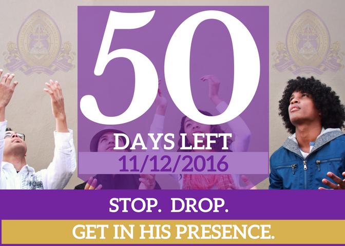 50-days-left-for-website