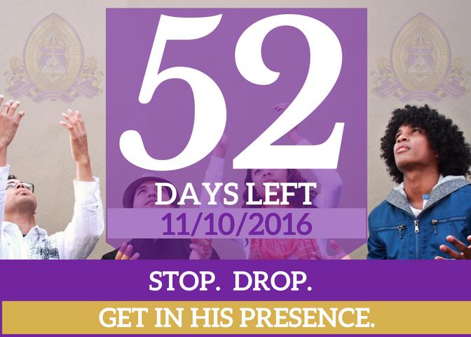 52-days-left-for-website