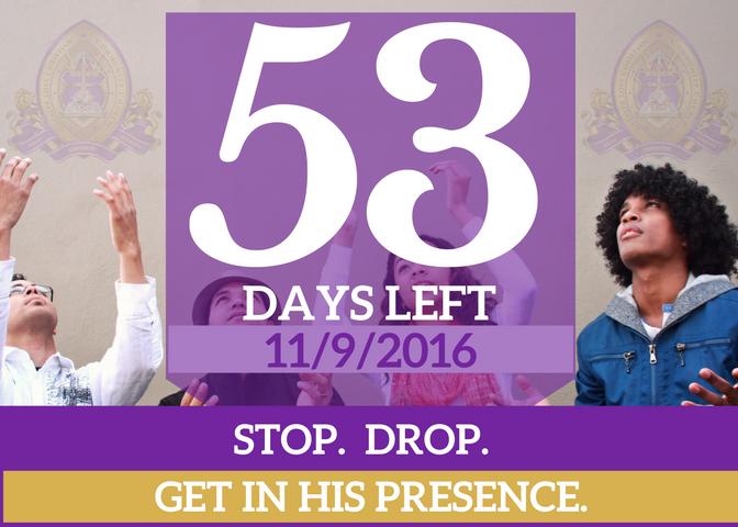 53-days-left-for-website