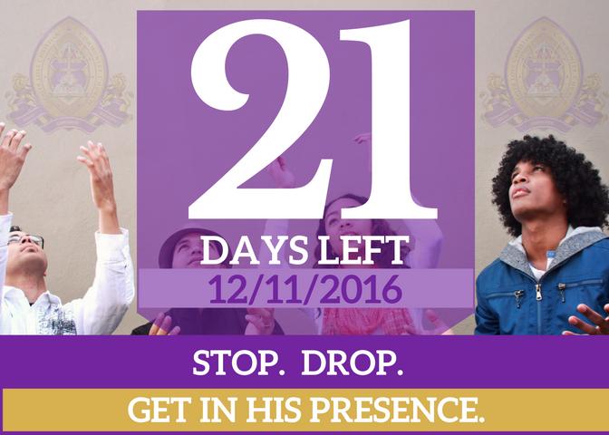 21-days-left-for-website