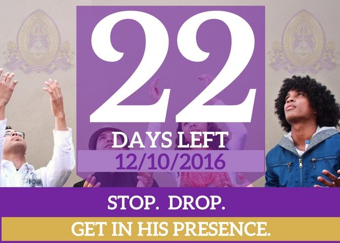22-days-left-for-website