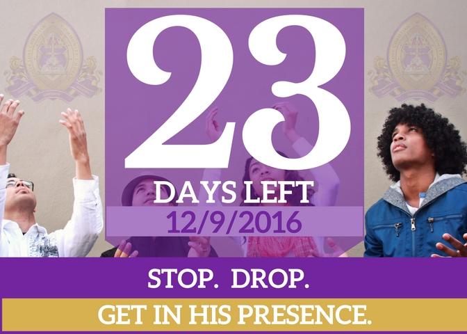 23-days-left-for-website