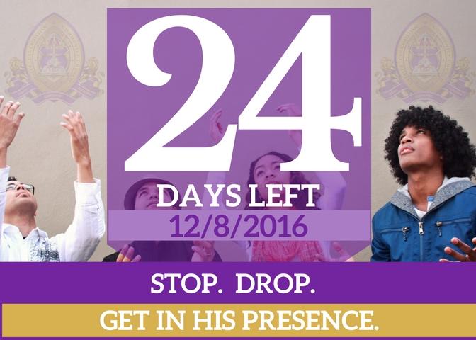 24-days-left-for-website