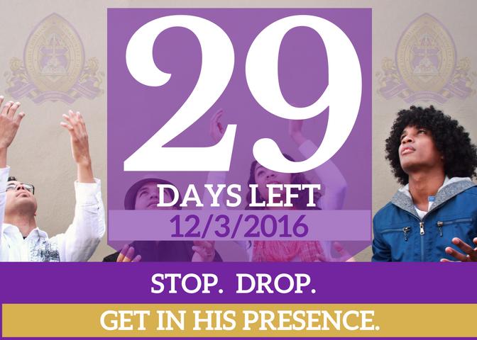 29-days-left-for-website